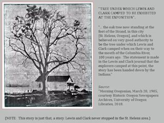 Image, 1905, Lewis and Clark Tree, St. Helens, Oregon, click to enlarge