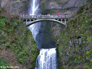 Image, 2005, Multnomah Falls, Oregon, Benson Bridge, click to enlarge