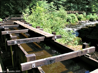 Image, 2005, Flume, Cedar Creek Grist Mill, click to enlarge