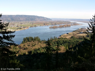 Image, 2004, Columbia River looking upstream from Bradley Wayside, Oregon, click to enlarge