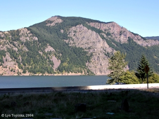 Image, 2004, Dog Mountain, Washington, click to enlarge