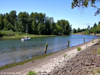 Image, 2005, Head of the Elochoman Slough, Cathlamet, Washington, click to enlarge
