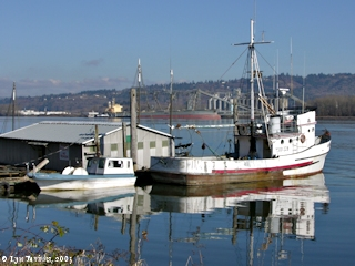 Image, 2005, Goble, Oregon, boat dock, click to enlarge