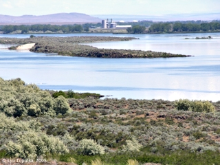 Image, 2005, Blalock Islands towards Grain Elevator, click to enlarge