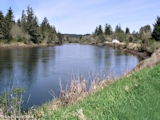 Image, 2004, Grays River, Washington, from near mouth, looking upstream