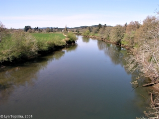 Image, 2004, Grays River, Washington, click to enlarge