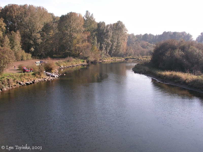 Image, 2003, Kalama River looking upstream, click to enlarge
