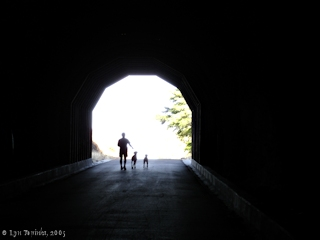 Image, 2005, East Portal, Mosier Tunnels, click to enlarge
