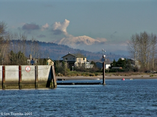 Image, 2005, Mount St. Helens from Willow Grove Beach, click to enlarge