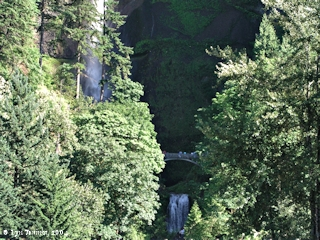 Image, 2004, Multnomah Falls, Oregon, Benson Bridge, click to enlarge
