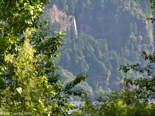 Image, 2005, Multnomah Falls from St. Cloud Wayside, click to enlarge