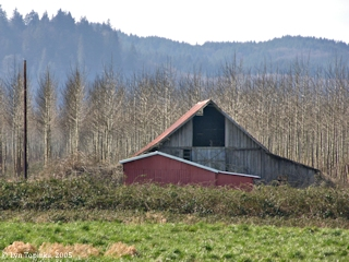 Image, 2005, Barn, Puget Island, Washington, click to enlarge