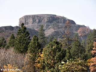 Image, 2004, Rowena Crest, Oregon, from Mayer State Park, Oregon, click to enlarge