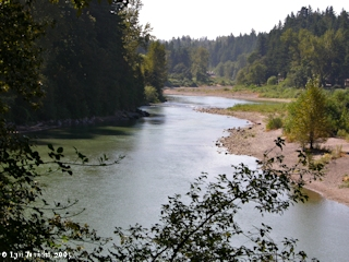 Image, 2005, Sandy River, Oregon, click to enlarge