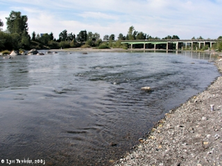 Image, 2003, Sandy River looking downsteam towards I-84, click to enlarge