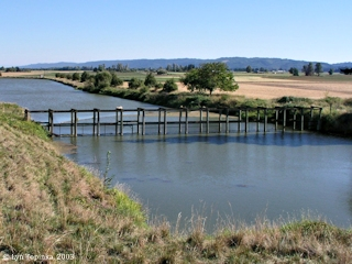 Image, 2003, Wier at Gilbert River, Sauvie Island, click to enlarge