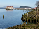 Image, 2005, Tongue Point from Astoria, Oregon