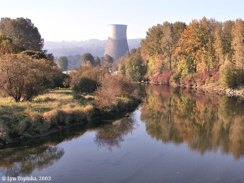 Image, 2003, Trojan Nuclear Facility from the Kalama River, click to enlarge
