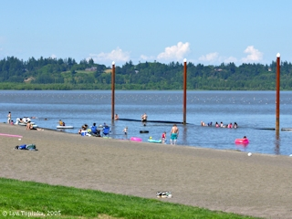Image, 2005, Vancouver Lake, Washington,  click to enlarge