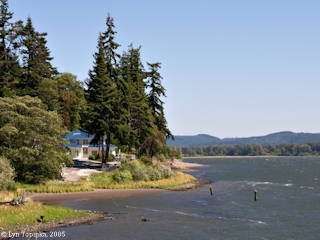Image, 2005, West side of Cape Horn, Washington, click to enlarge