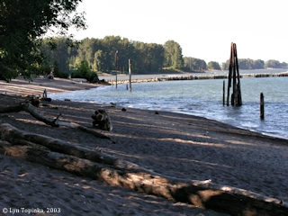 Image, 2003, Mouth of the Willamette River, from Kelley Point Park, click to enlarge