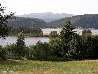 Image, 2003, Crims Island from upper road, click to enlarge
