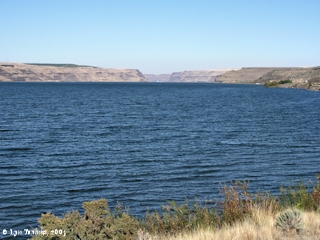 Image, 2003, Lake Wallula from Sand Station Recreation Area, Oregon, click to enlarge