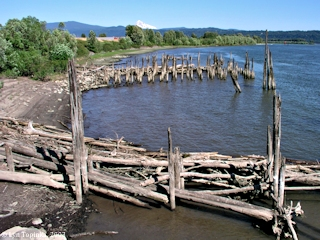 Image, 2003, Steamboat Landing, Washougal, Washington, click to enlarge
