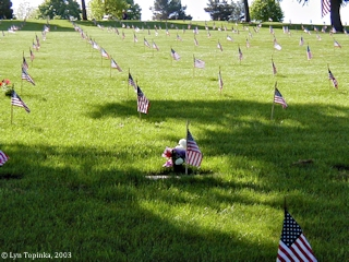 Image, 2003, Willamette National Cemetery, Oregon, click to enlarge