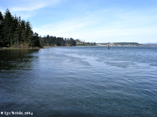 Image, 2004, Baker Bay and Ilwaco, Washington, from Cape Disappointmetn, click to enlarge