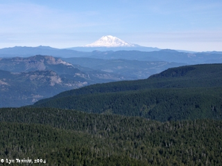Image, 2004, View of Columbia River Valley and Mount Adams from Larch Mountain, click to enlarge