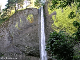 Image, 2004, Latourell Falls, Oregon, click to enlarge