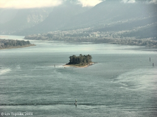 Image, 2004, Skamania Island, as seen from Cape Horn, click to enlarge