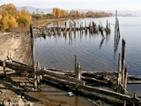 Images, 2004, Steamboat Landing, Washington