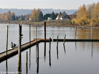 Image, 2004, Steamboat Landing, Washougal, Washington, click to enlarge
