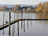 Images, 2004, Steamboat Landing Park, Washougal, Washington