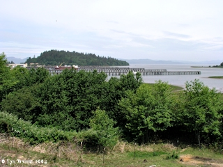 Image, 2004, East side of Tongue Point, click to enlarge