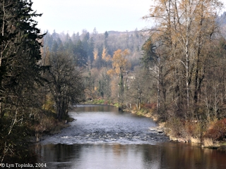 Image, 2004, Washougal River, downstream, click to enlarge