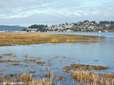 Image, 2005, Youngs Bay and Astoria, Oregon, from mouth of Lewis and Clark River