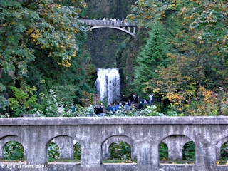 Image, 2005, Benson Bridge and Lower Multnomah Falls, click to enlarge