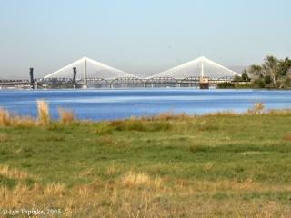 Image, 2005, Cable Bridge from Sacajawea State Park, click to enlarge