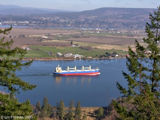 Image, 2005, Cargo ship passing Puget Island, click to enlarge