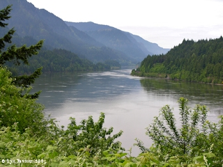 Image, 2005, Columbia River looking downstream Bridge of the Gods, click to enlarge