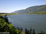 Image, 2005, Columbia River looking upstream from Skamania Landing