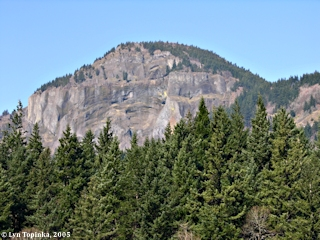 Image, 2005, Hamilton Mountain, Washington, from North Bonneville, click to enlarge