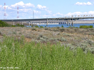 Image, 2005, Interstate 82-395 Bridge from Plymouth Park, Washington, with McNary Dam, click to enlarge