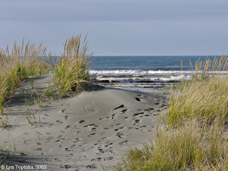 The Columbia River Long Beach Washington 3:59 pm, saturday oct 17, 2020 pdt. the columbia river