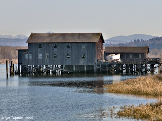 Image, 2005, Old fishing station, Mayger, Oregon, click to enlarge
