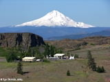 Image, 2005, Mount Hood, Oregon, from Horsethief Butte Overlook