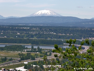 Image, 2005, Mount St. Helens from Rocky Butte, click to enlarge